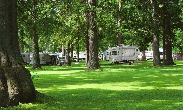 The best places to camp in ohio survival life for Indian lake ohio fishing