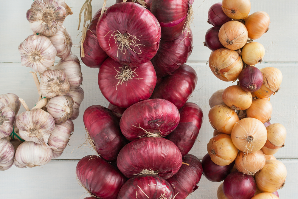 Onions & Garlic | How to Have a Self-Sufficient Small Backyard Garden