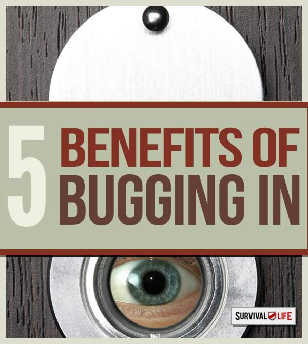 5 benefits of bugging in