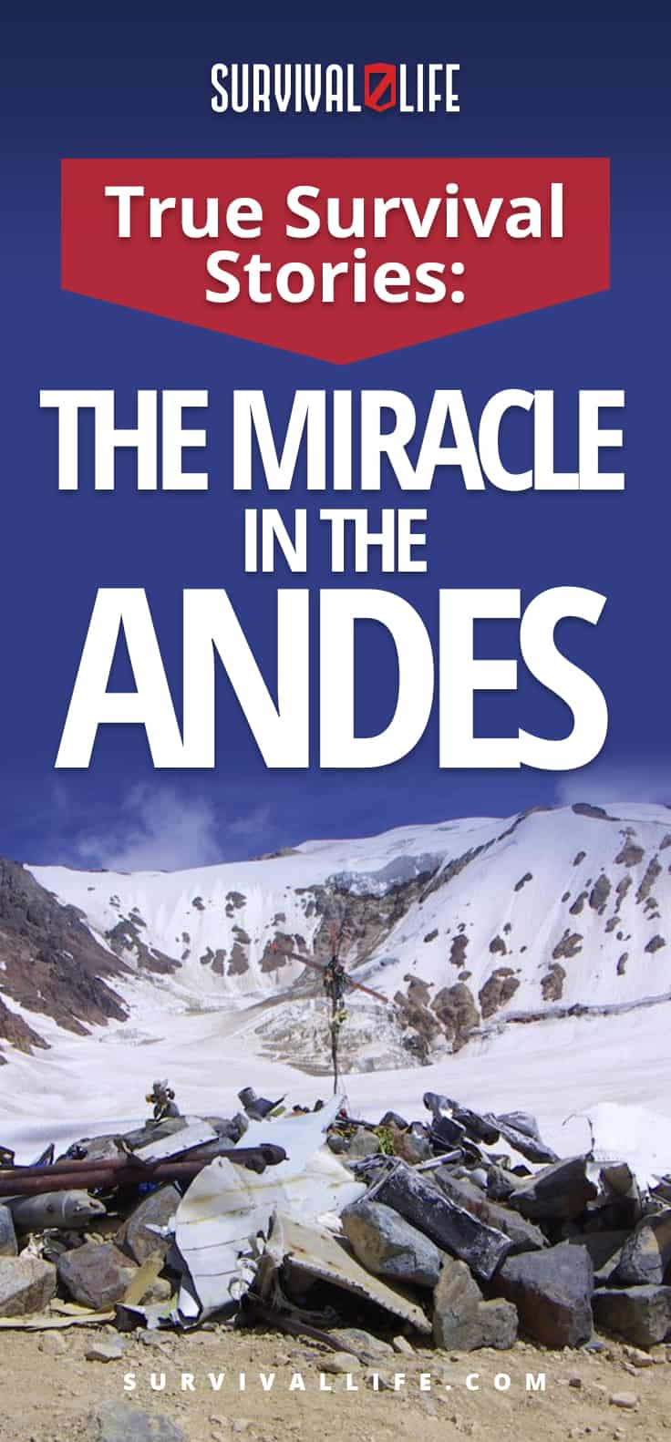 True Survival Stories: The Miracle In the Andes