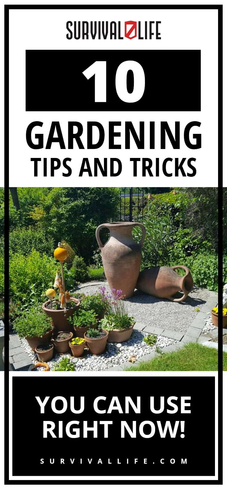 Learn gardening tips and advice garden
