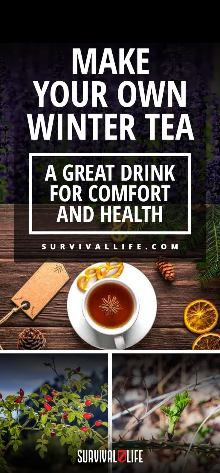 Make Your Own Winter Tea | A Great Drink for Comfort and Health
