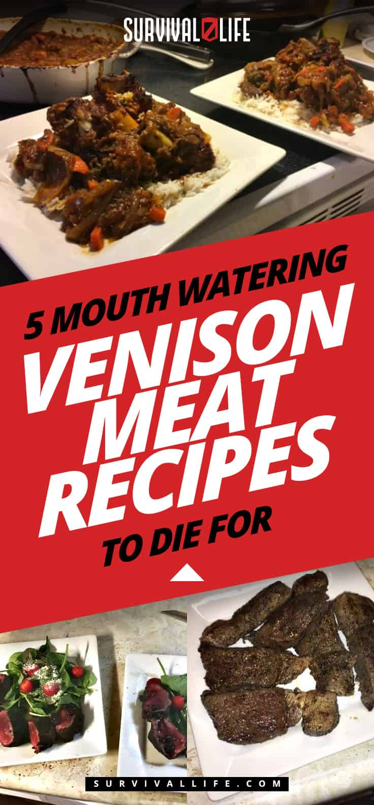 5 Mouth Watering Venison Meat Recipes To Die For
