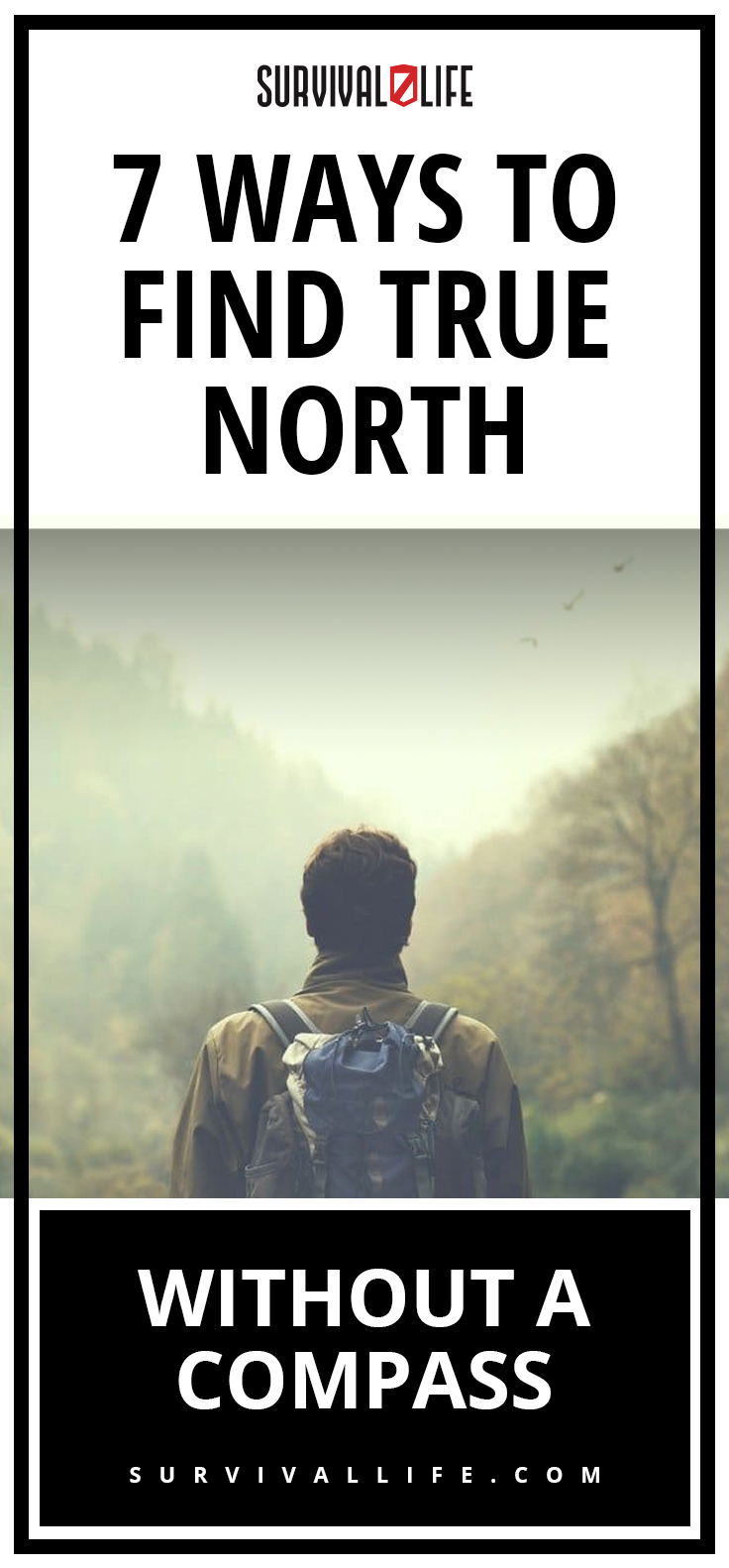 Placard | Ways To Find True North Without A Compass