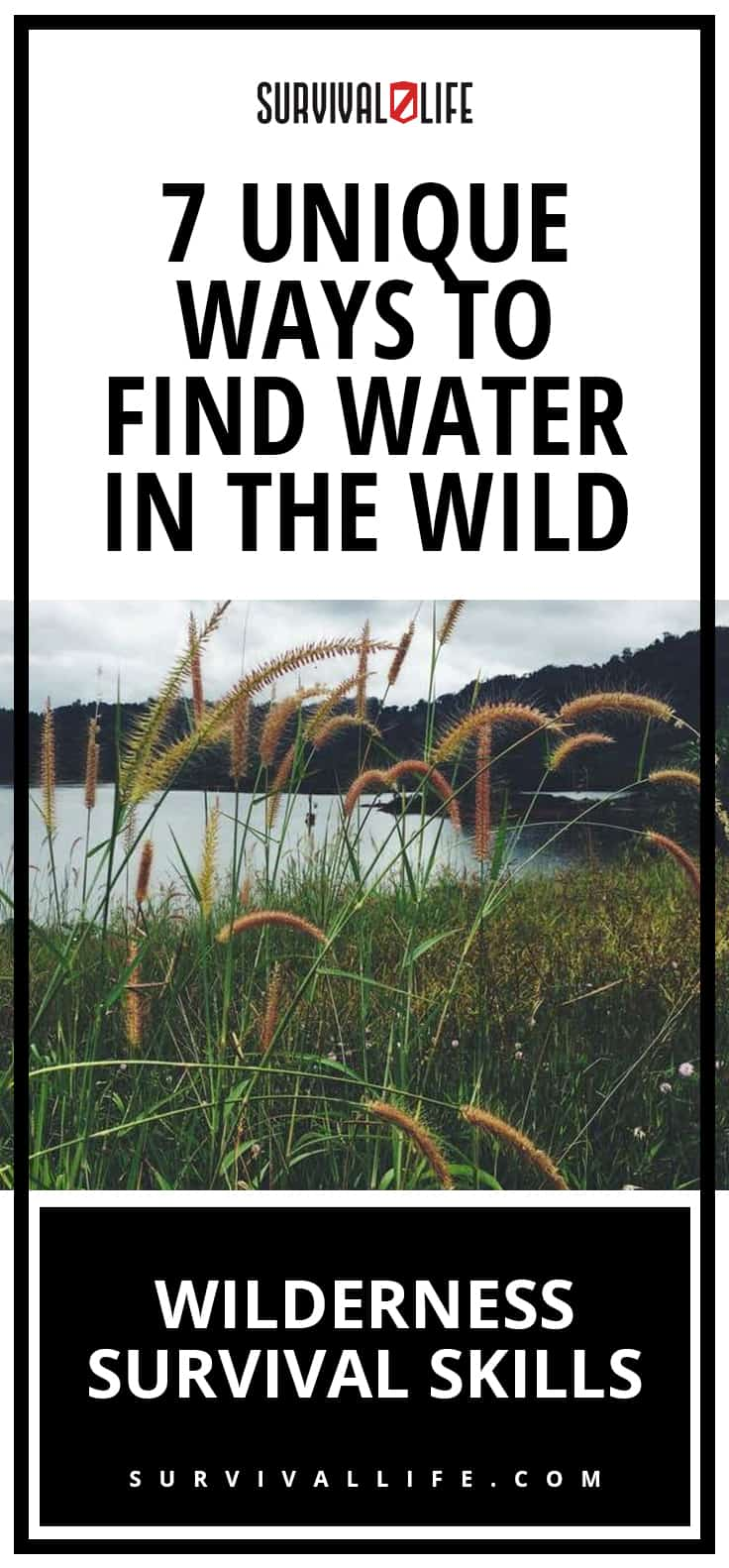 Wilderness Survival Skills | 7 Unique Ways To Find Water In The Wild