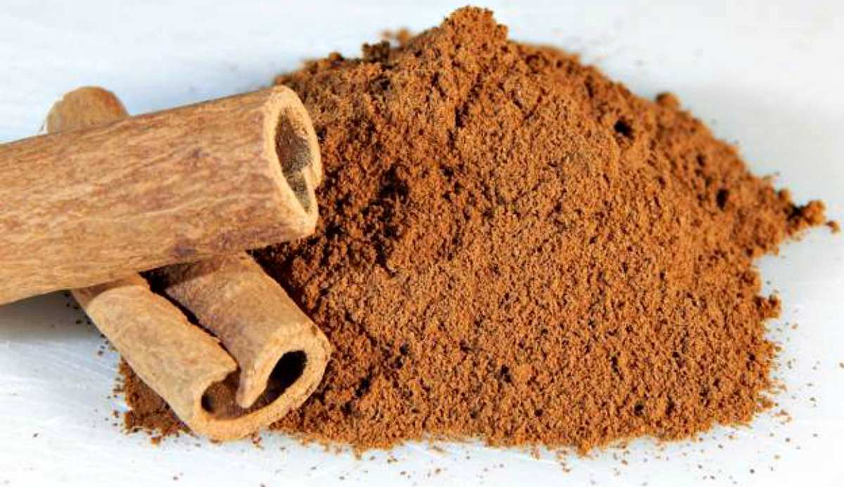Cinnamon | Survival Benefits Of Cinnamon